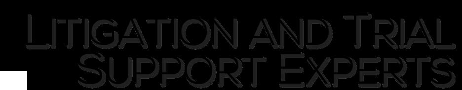 Litigation support experts